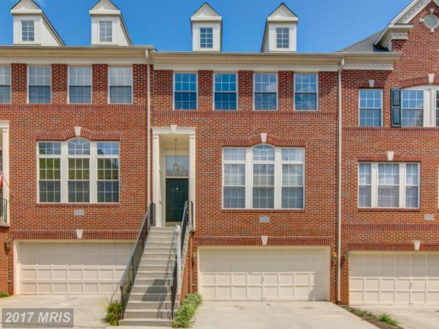 20368 Hawick Terrace, Sterling, VA 20165 (#LO10029897) :: The Tom Conner Team