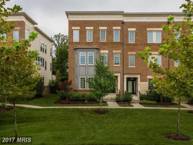 22860 Goldsborough Terrace, Ashburn, VA 20148 (#LO10030518) :: Pearson Smith Realty