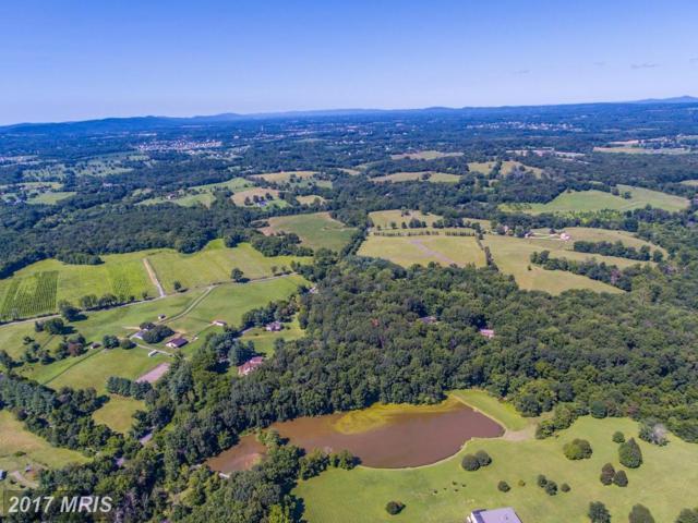 19221 Greggsville Road, Purcellville, VA 20132 (#LO10030995) :: LoCoMusings