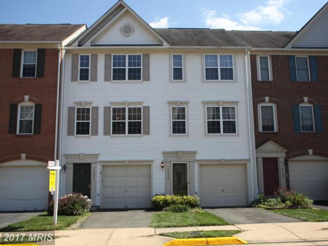 45461 Bluemont Junction Square, Sterling, VA 20164 (#LO10031582) :: Pearson Smith Realty