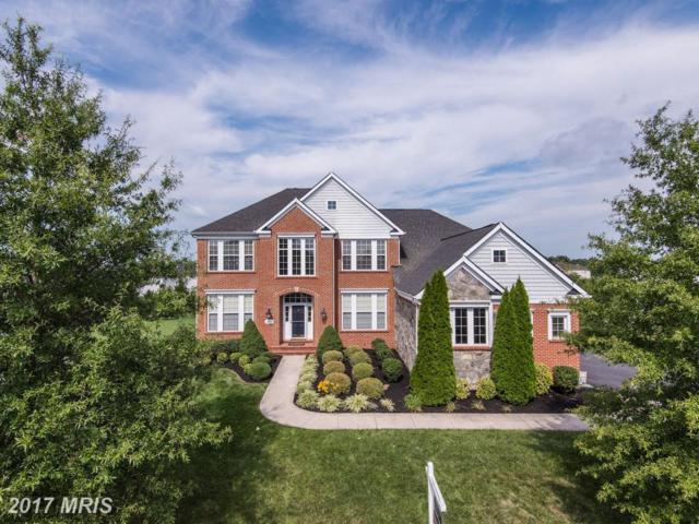 25539 Little Cedar Court, Chantilly, VA 20152 (#LO10031681) :: Pearson Smith Realty
