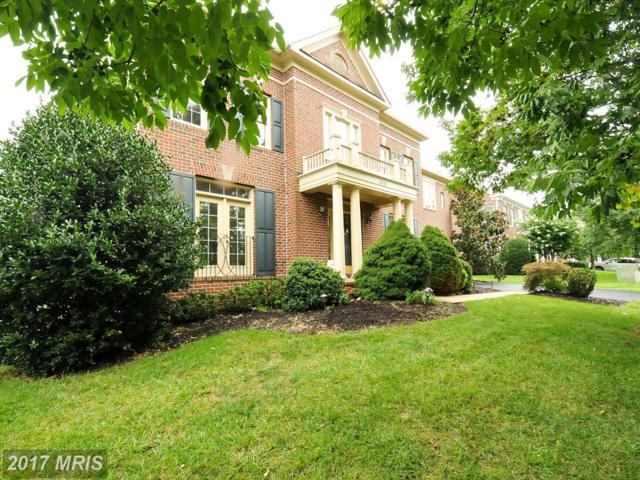 18323 Sea Island Place, Leesburg, VA 20176 (#LO10032069) :: The Greg Wells Team