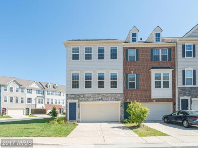 42259 Dean Chapel Square, Chantilly, VA 20152 (#LO10032229) :: Pearson Smith Realty