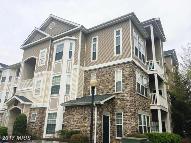 510 Sunset View Terrace SE #306, Leesburg, VA 20175 (#LO10032495) :: Pearson Smith Realty