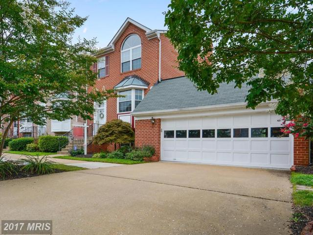21068 View Glass Terrace, Sterling, VA 20164 (#LO10032726) :: Pearson Smith Realty