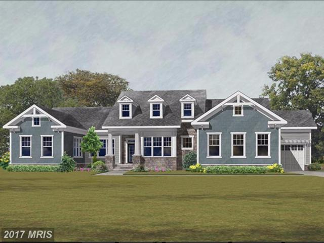41784 Prairie Aster Court, Ashburn, VA 20148 (#LO10033208) :: Labrador Real Estate Team