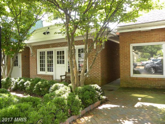 17 Washington Street E, Middleburg, VA 20117 (#LO10033312) :: Jacobs & Co. Real Estate