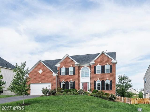 41586 Bostonian Place, Aldie, VA 20105 (#LO10034676) :: The Vashist Group