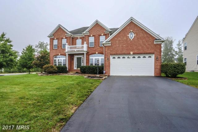 25441 Jubilant Drive, Aldie, VA 20105 (#LO10034681) :: The Cruz Group