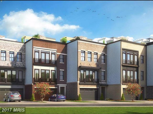 29026 Sullivans Cove Square, Ashburn, VA 20148 (#LO10034761) :: Browning Homes Group