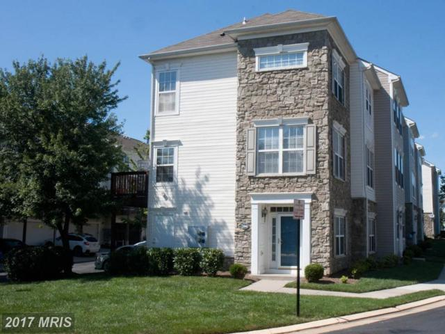 21846 Kelsey Square, Ashburn, VA 20147 (#LO10035061) :: Network Realty Group