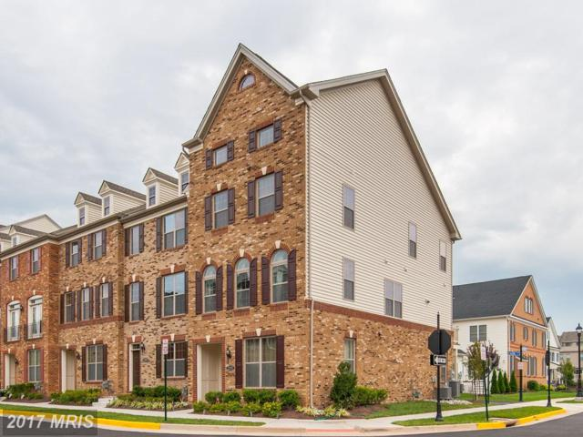 22592 Cambridgeport Square, Ashburn, VA 20148 (#LO10035087) :: Network Realty Group