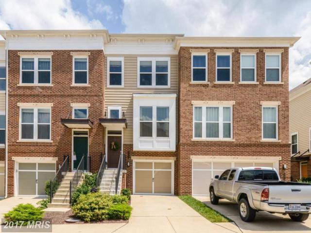 22468 Snow Powder Terrace, Ashburn, VA 20148 (#LO10035244) :: LoCoMusings