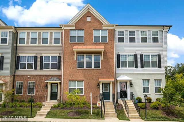 44031 Peirosa Terrace, Chantilly, VA 20152 (#LO10035252) :: Pearson Smith Realty