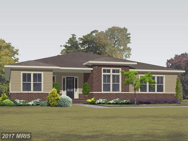 41788 Prairie Aster Court, Ashburn, VA 20148 (#LO10035507) :: Labrador Real Estate Team