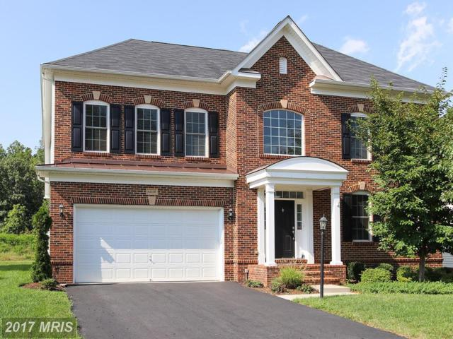 42338 Rising Moon Place, Ashburn, VA 20148 (#LO10035863) :: LoCoMusings