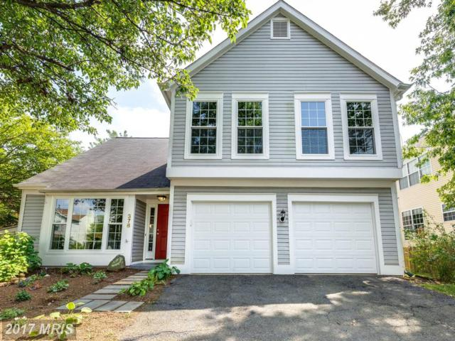 378 Deerpath Avenue SW, Leesburg, VA 20175 (#LO10035866) :: Network Realty Group
