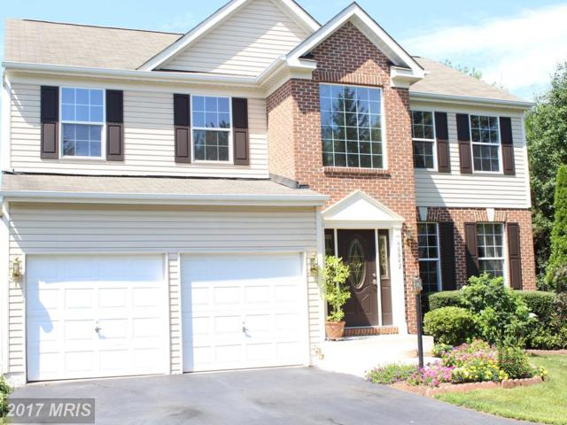 46842 Willowood Place, Sterling, VA 20165 (#LO10036348) :: The Greg Wells Team