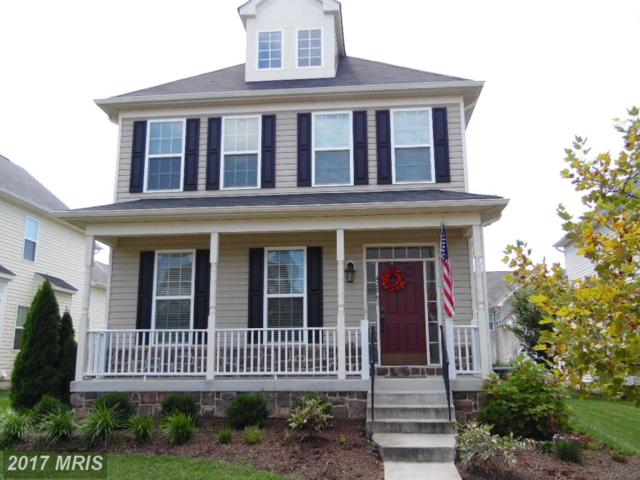 42061 Greenstone Drive, Aldie, VA 20105 (#LO10036454) :: The Greg Wells Team