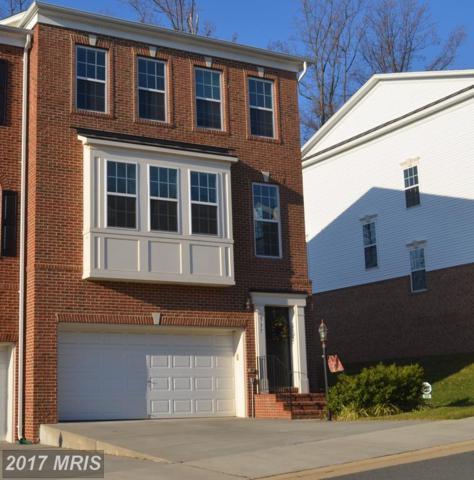 337 Caldwell Terrace SE, Leesburg, VA 20175 (#LO10037216) :: LoCoMusings