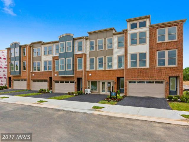 24460 Juniper Wood Terrace, Stone Ridge, VA 20105 (#LO10037327) :: Colgan Real Estate