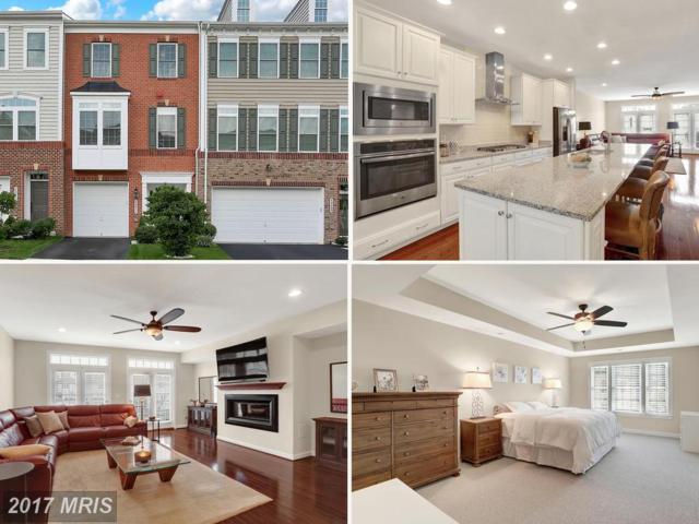 42211 Plainridge Terrace, Aldie, VA 20105 (#LO10037621) :: Circadian Realty Group