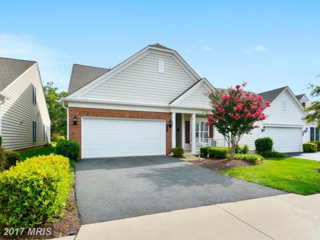 44288 Panther Ridge Drive, Ashburn, VA 20147 (#LO10038168) :: Pearson Smith Realty