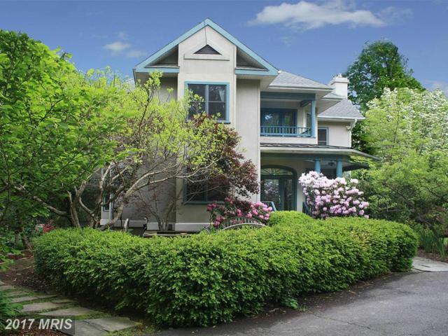 39301 Longhill Lane, Aldie, VA 20105 (#LO10038901) :: Pearson Smith Realty