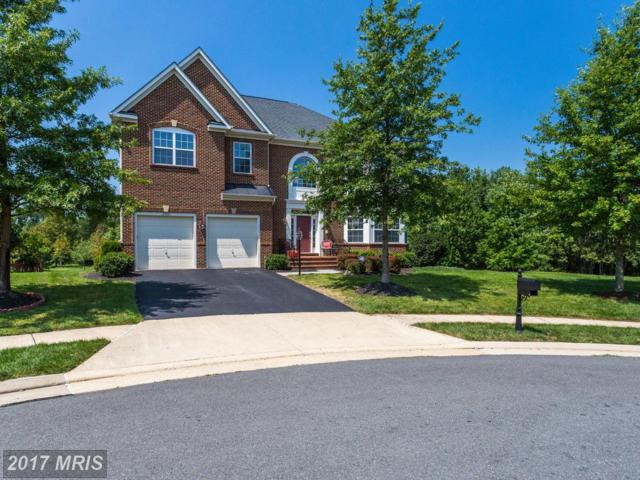 23069 Rushmore Court, Ashburn, VA 20148 (#LO10039357) :: Pearson Smith Realty