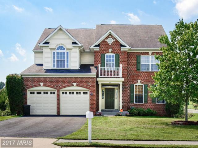 704 Hunton Place NE, Leesburg, VA 20176 (#LO10039927) :: Pearson Smith Realty