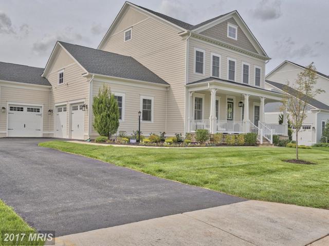 41609 Bloomfield Path Street, Ashburn, VA 20148 (#LO10040205) :: Pearson Smith Realty