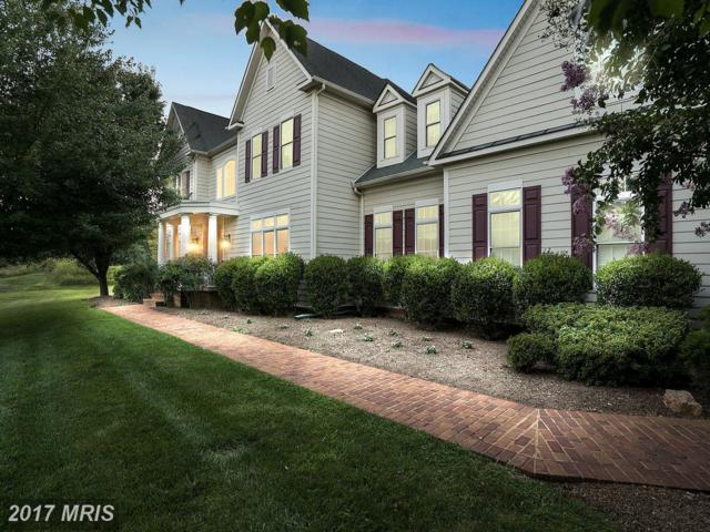 41596 Swiftwater Drive, Leesburg, VA 20176 (#LO10040925) :: Pearson Smith Realty