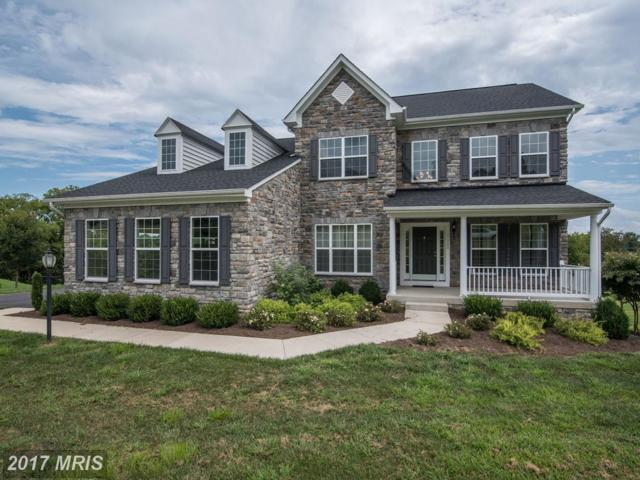 13200 Waterford View Court, Lovettsville, VA 20180 (#LO10041107) :: LoCoMusings