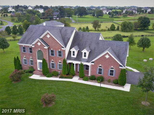 16607 Goldencrest Circle, Purcellville, VA 20132 (#LO10042494) :: Pearson Smith Realty