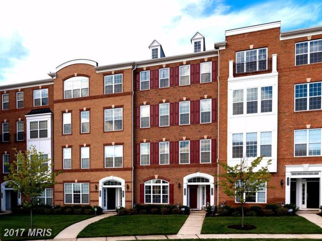 23802 Hopewell Manor Terrace, Ashburn, VA 20148 (#LO10043620) :: LoCoMusings