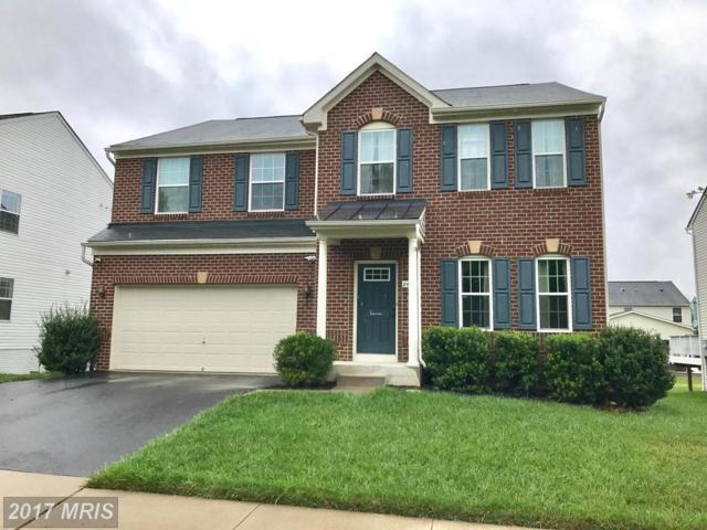 26042 Kimberly Rose Drive, Chantilly, VA 20152 (#LO10044286) :: Wicker Homes Group