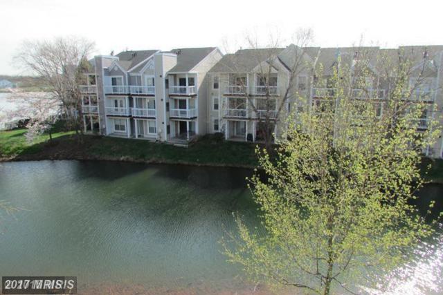 20596 Cornstalk Terrace #302, Ashburn, VA 20147 (#LO10044508) :: LoCoMusings