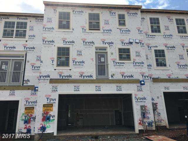 46649 Joubert Terrace, Sterling, VA 20165 (#LO10045490) :: Pearson Smith Realty