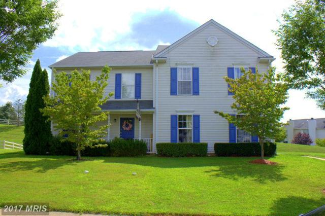 35927 Newberry Crossing Place, Round Hill, VA 20141 (#LO10045574) :: LoCoMusings