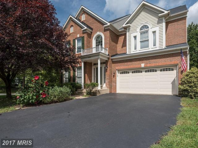 20886 Laurel Leaf Court, Ashburn, VA 20147 (#LO10045595) :: Wicker Homes Group
