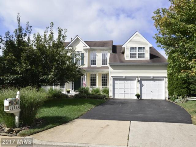 17233 Magic Mountain Drive, Round Hill, VA 20141 (#LO10045959) :: Pearson Smith Realty