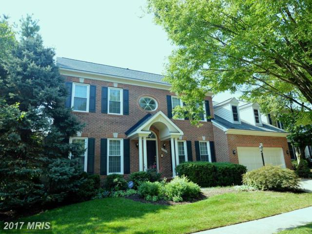43245 Lighthouse Place, Chantilly, VA 20152 (#LO10046274) :: Mosaic Realty Group