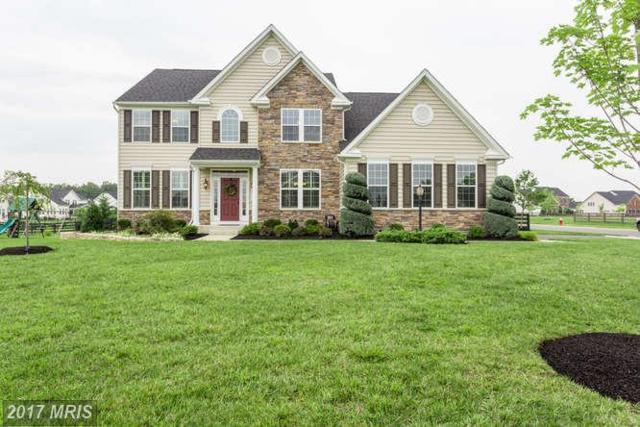 26717 Gayfeather Drive, Chantilly, VA 20152 (#LO10046611) :: LoCoMusings