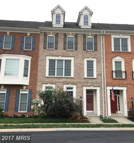 42461 Redstone Terrace, Ashburn, VA 20148 (#LO10046856) :: Pearson Smith Realty