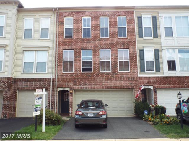 23449 Spice Bush Terrace, Ashburn, VA 20148 (#LO10047571) :: LoCoMusings
