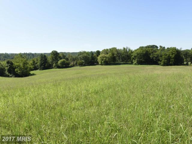 Sally Mill Road, Middleburg, VA 20117 (#LO10047683) :: Century 21 New Millennium