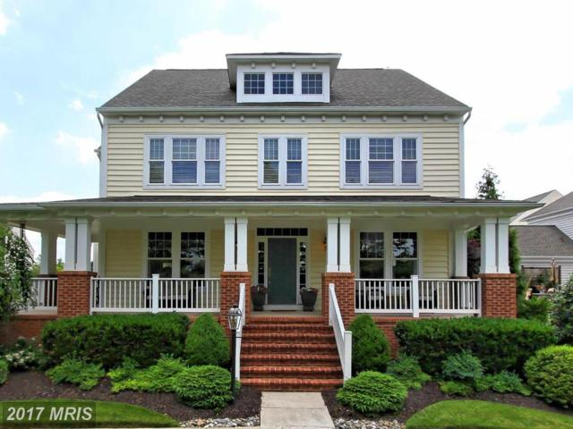 42587 Good Hope Lane, Ashburn, VA 20148 (#LO10048709) :: Pearson Smith Realty