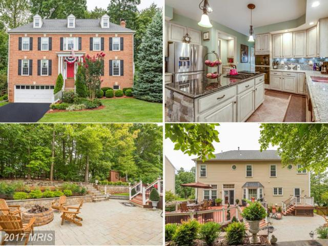 20636 Cutwater Place, Sterling, VA 20165 (#LO10049222) :: Pearson Smith Realty