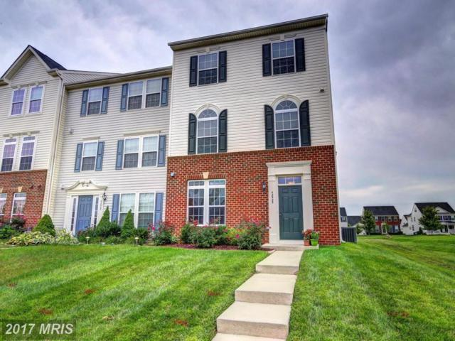 42925 Edgewater Street, Chantilly, VA 20152 (#LO10050206) :: Mosaic Realty Group