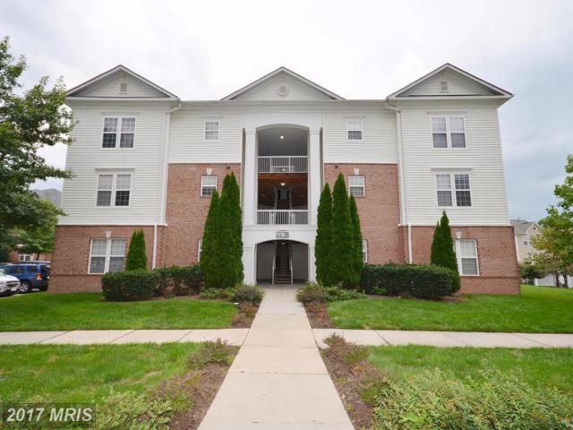 22706 Blue Elder Terrace #301, Ashburn, VA 20148 (#LO10050679) :: LoCoMusings